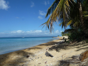Vieques Beaches: A Guide