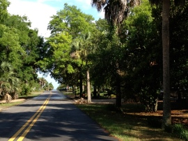 The streets of Apalachicola