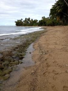 Steps Beach, Rincón, Puerto Rico