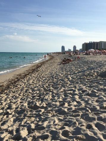 Ocean Beach, Florida