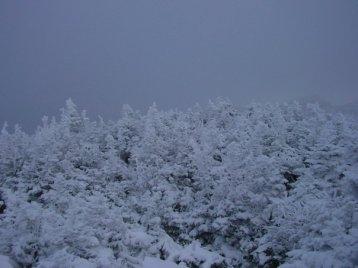 Summiting Mount Marcy